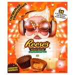 Reeses Advent Calendar 247g
