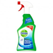 Dettol Mould and Mildew Remover Spray 750ml